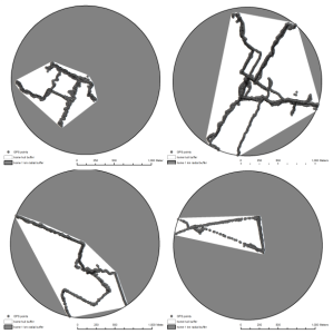 Four illustrative examples of minimally convex polygons (white area) around GPS waypoints falling within 1Km of the residence (total area of circles).
